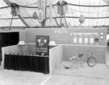 Electricity display and booth