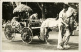 1928 Decorated horse and cart, Miss Gertrude Buffington