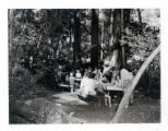 Group of girls working at picnic tables in the redwoods