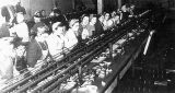 Women working in the Cannery